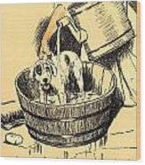 Washed By Mary - A Dog Day Collection 4 Of 27 Wood Print