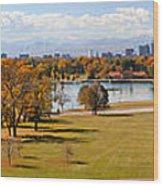 Washigton Park  Wood Print