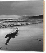 Washington Coast Wood Print