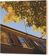 Washington D C Facades - Reflecting On Autumn In Georgetown  Wood Print