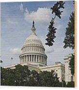 Washington Dc Capitol Dome Wood Print