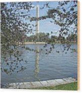 Washington In Spring Wood Print