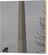 Washington Monument - Cherry Blossoms - Washington Dc - 01135 Wood Print