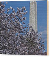 Washington Monument Wood Print by Susan Candelario