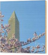 Washington Monument With Blossoms Wood Print