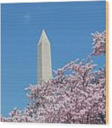 Washington Monument With Cherry Blossoms Wood Print