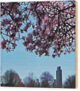 Washington Park II Wood Print