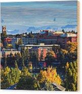 Washington State University In Autumn Wood Print by David Patterson