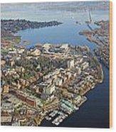 Washington University Wood Print