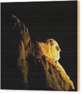 Washingtons Profile At Night Wood Print