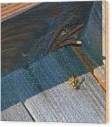 Wasp 4 Wood Print