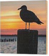 Watch The Birdie Wood Print