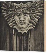 Watcher Of The Yard 2 Wood Print