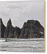 Watchful Eye Of Seal Rock Wood Print