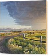 Watching The Storm Wood Print by Dana Moyer