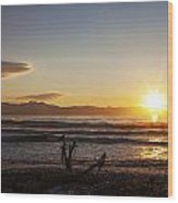 Watching The Sunset With Friends Wood Print