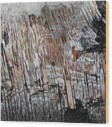 Water And Birch Wood Print