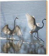 Water Ballet  Wood Print by Saija  Lehtonen