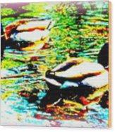 So Water Dance Is For Dancing Ducks  Wood Print