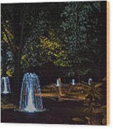 Water Dance Ll Wood Print