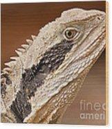 Water Dragon Close Up Wood Print