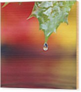 Water Dripping Wood Print