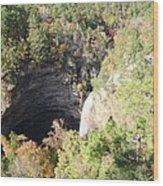 Water Fall In Petit Jean National Park Wood Print