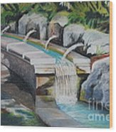 Water Fall In The Gratto Wood Print