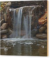 Water Feature Art Wood Print
