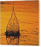 Water Fire Wood Print