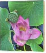 Water Flower Wood Print