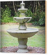 Water Fountain  Wood Print