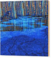 Water Hole Wood Print