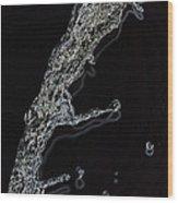 Water IIi Wood Print