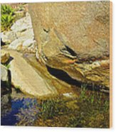 Water In Oasis On Borrego Palm Canyon Trail In Anza-borrego Desert Sp Campground-ca  Wood Print