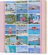 Water Island Poster Wood Print