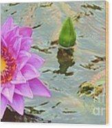 Water Lilies 001 Wood Print