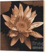 Water Lilies 012 Wood Print