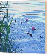 Water Lilies Blue Wood Print