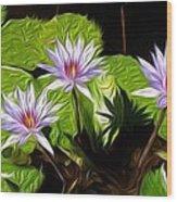 Water Lilies Wood Print