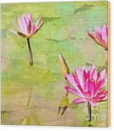Water Lilies Inspired By Monet Wood Print