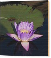 Water Lilies Monet Wood Print