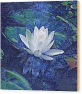 Water Lily Wood Print by Ann Powell
