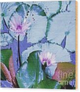 Water Lily II Wood Print by Ann Johndro-Collins