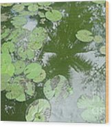 Water Lily Leaves And Palm Trees Wood Print