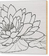 Water Lily Line Drawing Wood Print