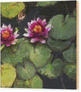 Water Lily Neo Wood Print