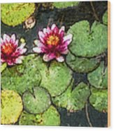 Water Lily Water Color Wood Print