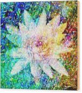Water Lily With Iridescent Water Drops Wood Print