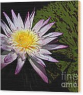 Water Lily With Lots Of Petals Wood Print
